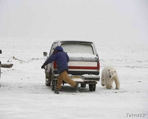 عکس هایی بسیار خنده دار از انسان و حیوان ها