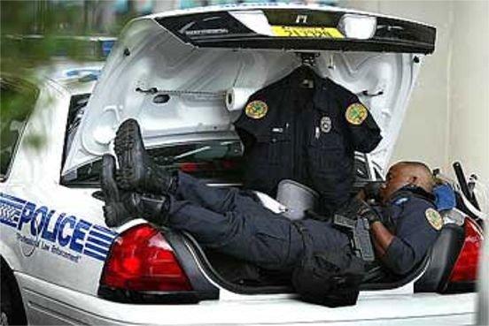 عکس های خنده دار از نگهبانان تنبل