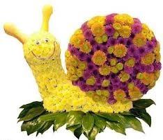 تزئین گل به شکل حیوانات