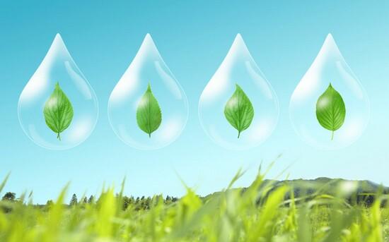 عکسهای زیبا از طبیعت با مضمون رنگ سبز