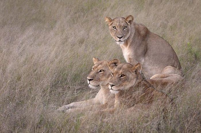 عکسهای بی نظیر و منتخب از طبیعت