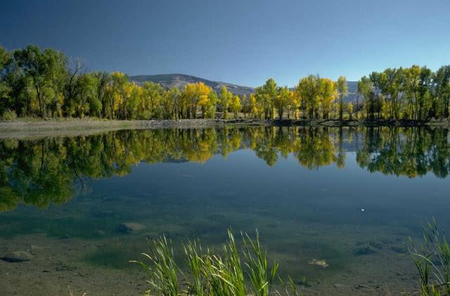 عکسهای زیبا از نقش آب در طبیعت