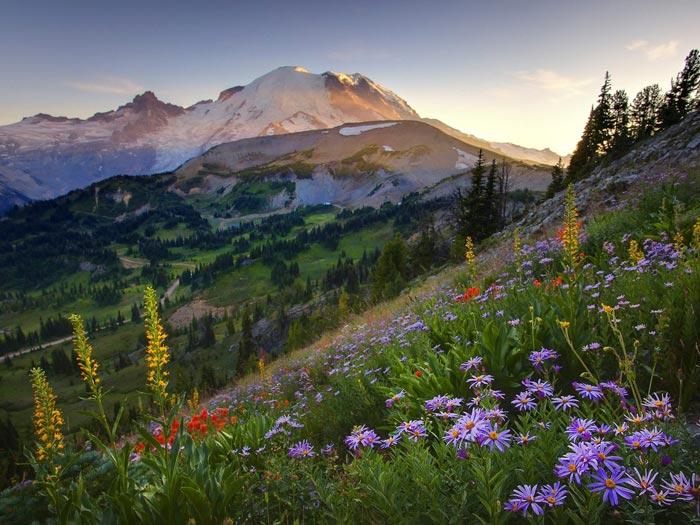 زیباترین عکس های طبیعت