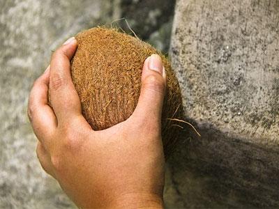 آموزش باز کردن نارگیل (تصویری)