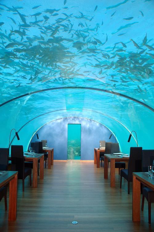 عكس از رستورانی در زیر دریا