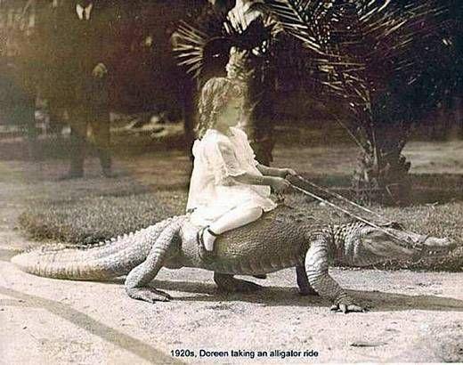 عکس های عجیب و خنده دار سوارکاری
