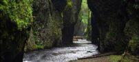 عکس های طبیعت شگفت انگیز در سراسر دنیا