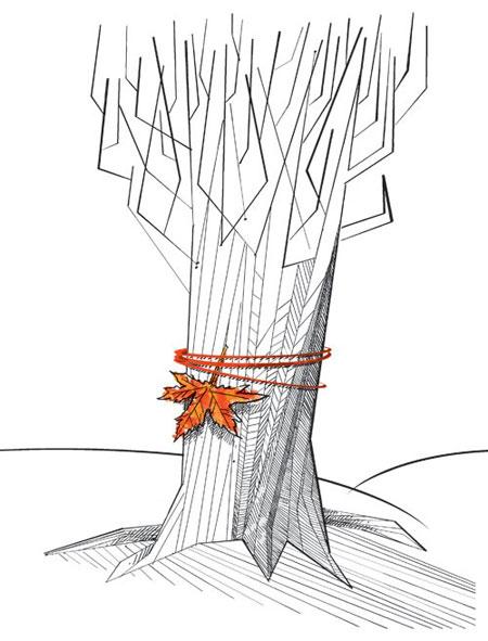 کاریکاتور فصل پاییز