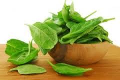 گیاهی که جلوی اشتها را می گیرد