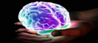 اتفاقاتی که در طول ارگاسم در مغز می افتد
