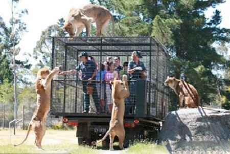 ترسناک ترین باغ وحش دنیا