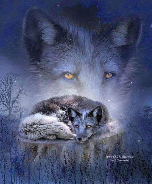 تصاویر فانتزی و بسیار زیبا از حیوانات