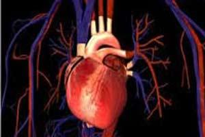رابطه بيماري قلبي و فعاليت جنسي