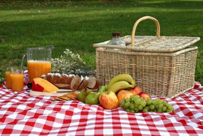 غذاهای مخصوص گردش و سفر کوتاه