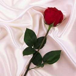 اس ام اس تبریک سالگرد ازدواج (4)