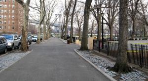 عکس های دیدنی از عریض ترین خیابان دنیا