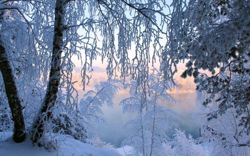 عکس های بسیار زیبا و دیدنی از زمستان برفی