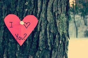 چگونه سالگرد ازدواجمان را رویایی کنیم ؟