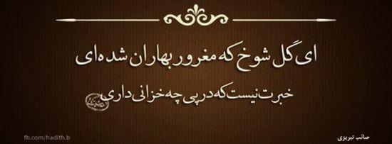 نوشته های پر محتوای عاشقانه و عرفانی (عکس )