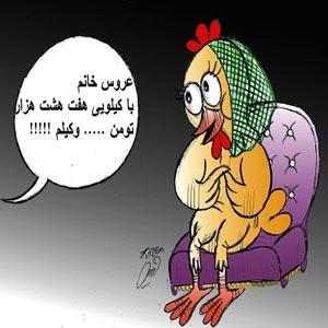 اس ام اس های طنز گرانی مرغ