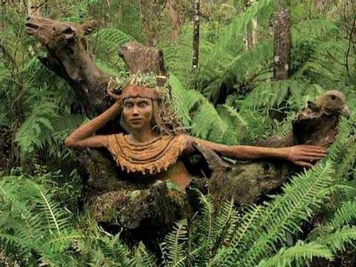 تصاویر مجسمه های زیبای درختی در جنگل
