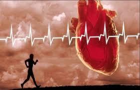 فوايد جسمی ورزش از دید پزشکی