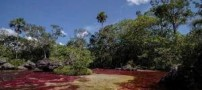 تصاویر رودخانه ی شگفت انگیز رنگی در کلمبیا