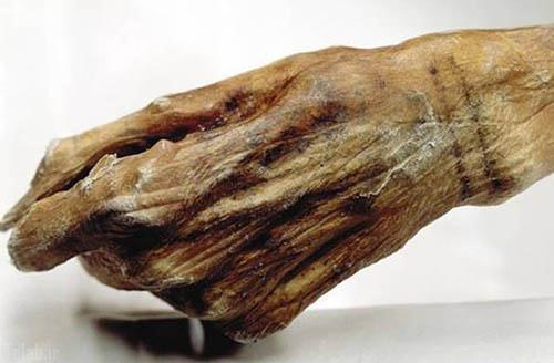 پیدا کردن مومیامی 5 هزار ساله ای با خالکوبی (عکس)