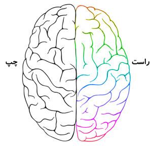 طالع بینی نیم کره مغز