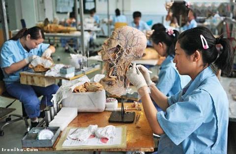 ساخت انسان مصنوعی با تمام اعضا در چین (عکس)