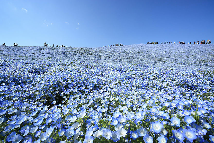 تصاویر زیبا و واقعی از زمین آسمانی