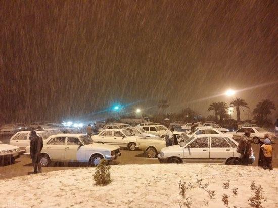 عکس های دیدنی از بارش برف در جهرم
