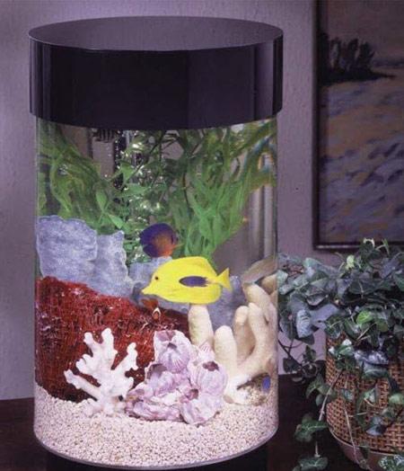 مدل های زیبای تزیین تنگ ماهی نوروز 94