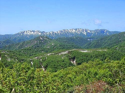 تصاویر متفاوت از پارک ملی در ژاپن
