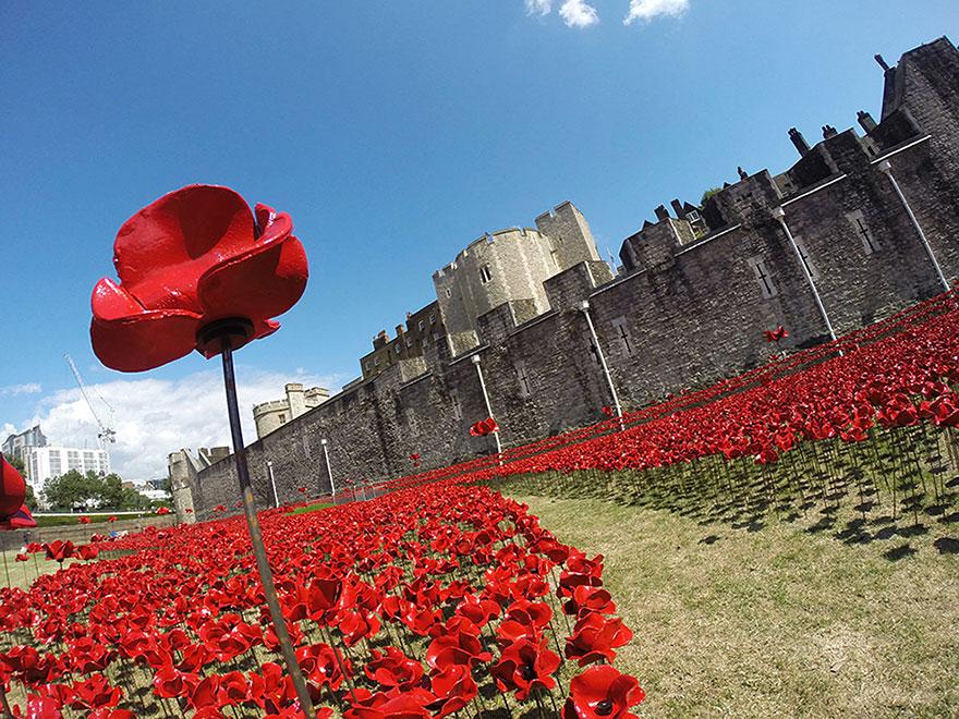 گل آرایی زیبا به یاد سربازان کشته شده
