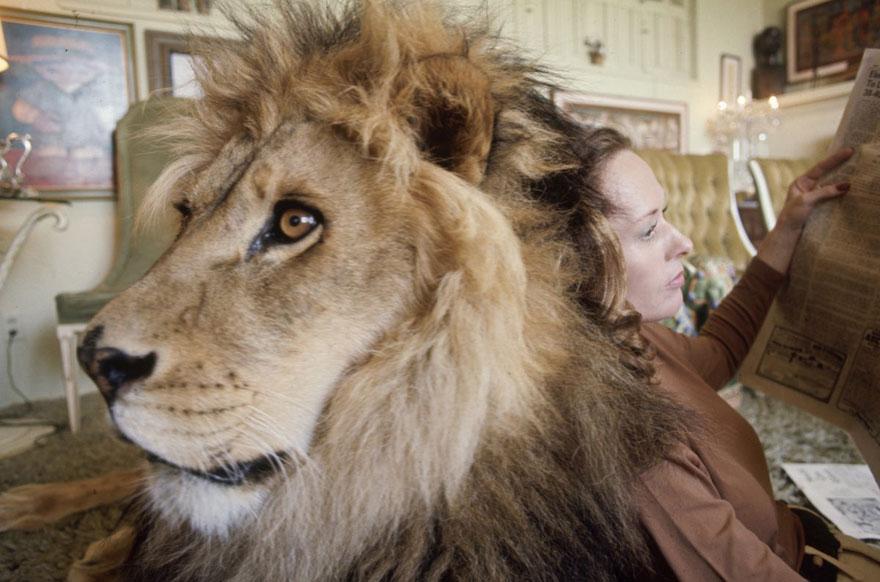 خانواده ای که با یک شیر وحشی زندگی میکنند (عکس)