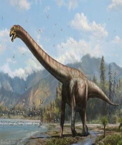 کشف کردن دایناسور در کشور چین + عکس