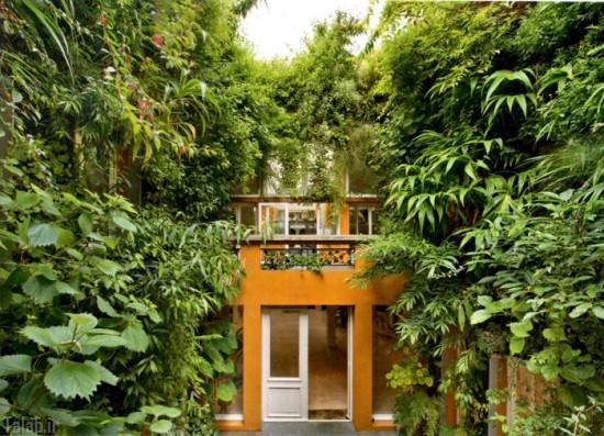 طبیعت فوق العاده زیبای حیاط خانه ی یک مرد