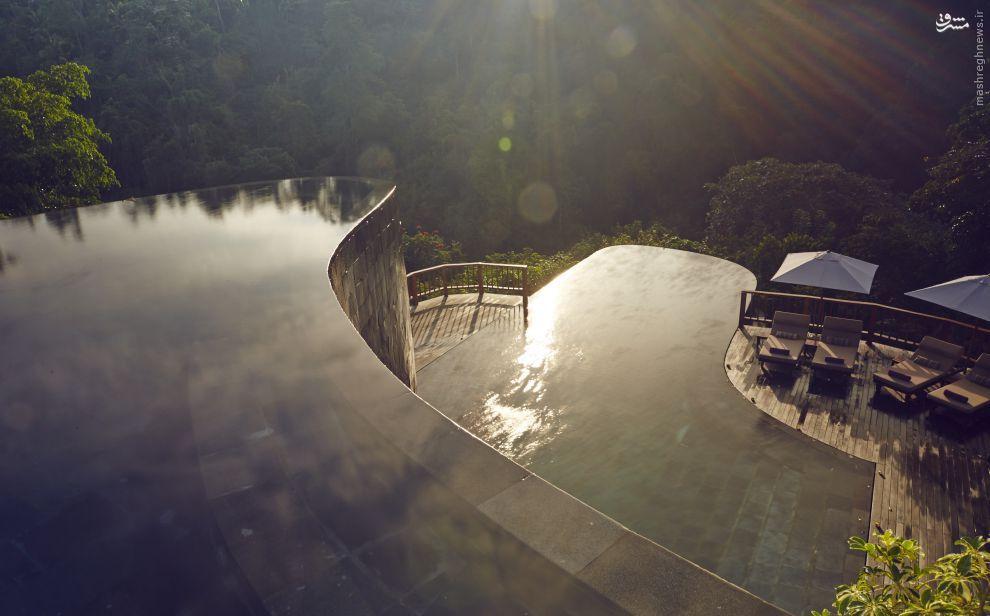 تصاویری از زیباترین استخر های جهان