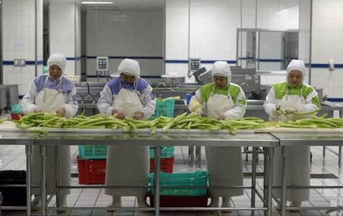 تصاویر دیدنی از مراحل آماده سازی غذا ها در قطار