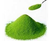 نکات تغذیهای جلبک کلرلا و تاثیر آن بر سلامتی