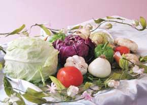سلامتی در سالمندی با تغذیه درست