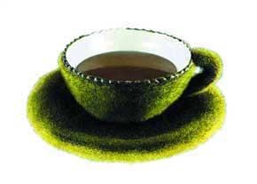 خواص و مضرات چای سبز