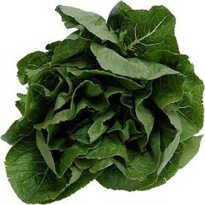 سبزی های مفید برای جلوگیری از نقایص جنین