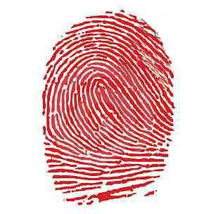 شخصیت شناسی از روی اثر انگشت دست