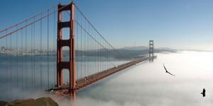 معرفی زیباترین پل های جهان