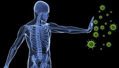 چند توصیه برای تقویت سیستم دفاعی بدن