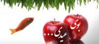 شعر زیبای بوی عیدی (شهیار قنبری)