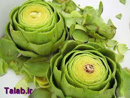 خواص دارویی گیاه آرتیشو (کنگر فرنگی)