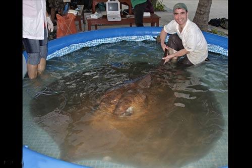 تصاویر دیدنی از بزرگ ترین ماهی های صید شده